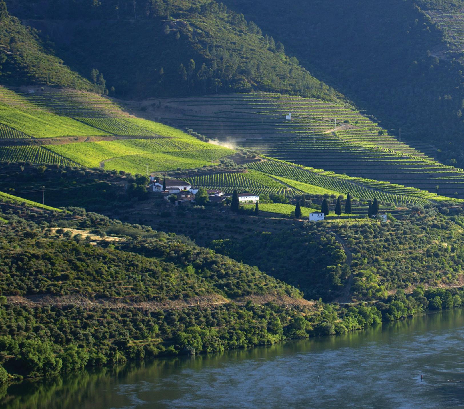 Quinta Featured Image